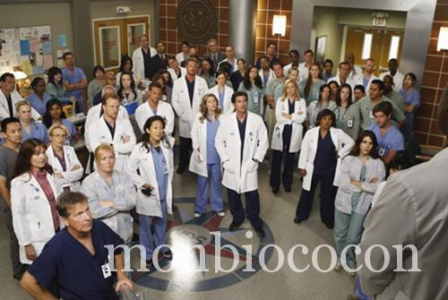 grey's anatomy-4.jpg