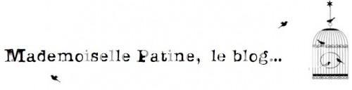 mademoiselle-patine-blog-1