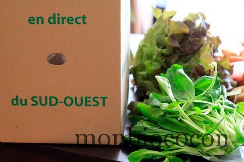 COM3POM-panier-bio-livraison-légumes-bordeaux-agen-toulouse-0
