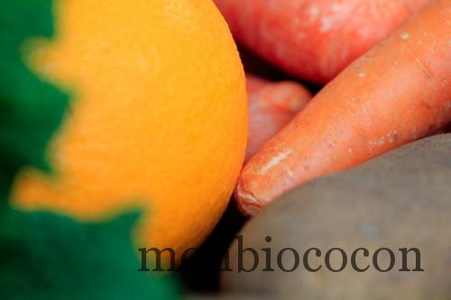 COM3POM-panier-bio-livraison-légumes-bordeaux-agen-toulouse-00000