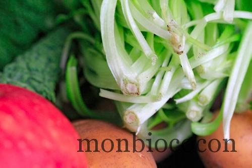 COM3POM-panier-bio-livraison-légumes-bordeaux-agen-toulouse-3