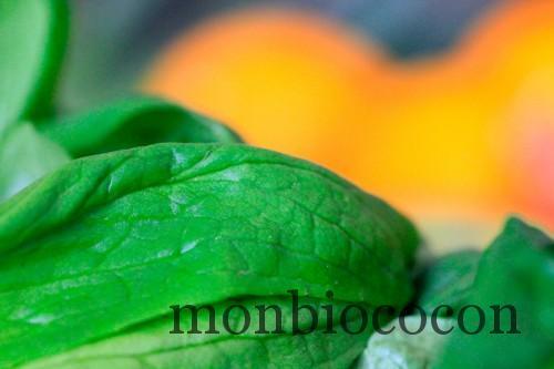 COM3POM-panier-bio-livraison-légumes-bordeaux-agen-toulouse-4