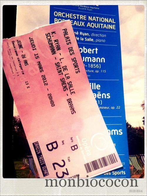 concert-palais-des-sports