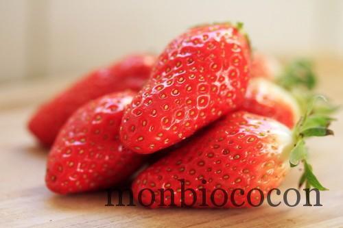 fraises-gariguettes-2012-00