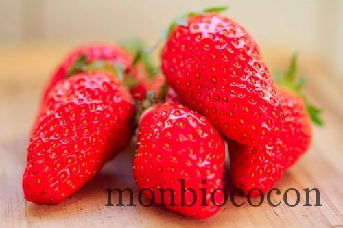 fraises-gariguettes-2012-8