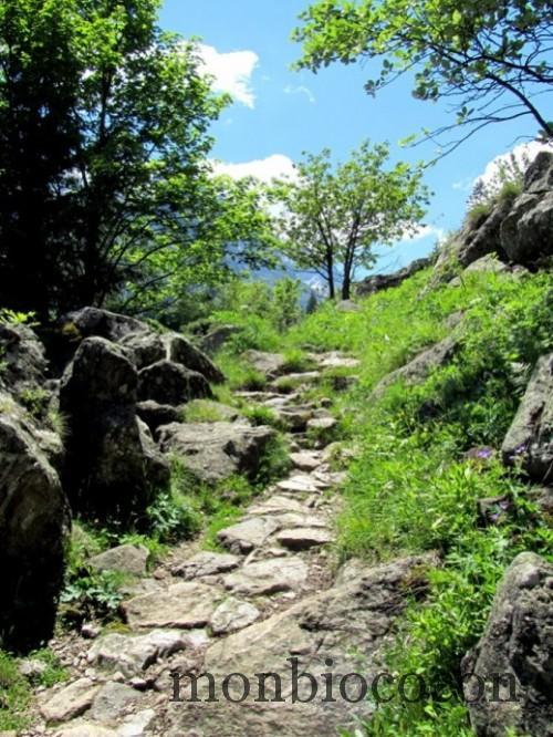 randonnée au lac du lauvitel alpes