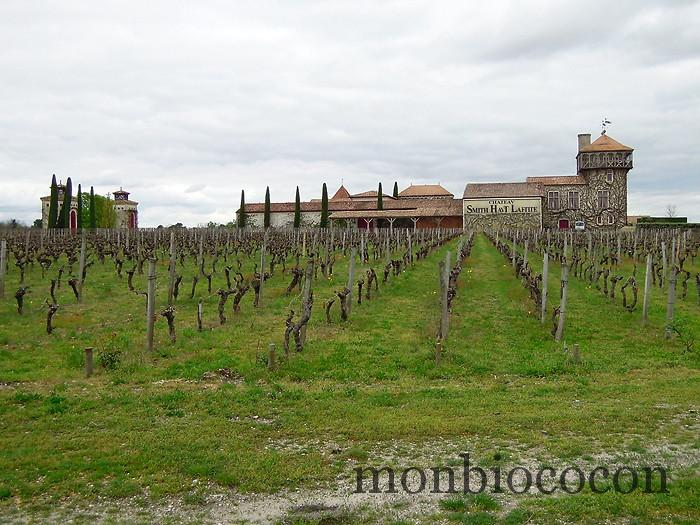 chateau-smith-haut-lafitte-gironde-vignoble-02