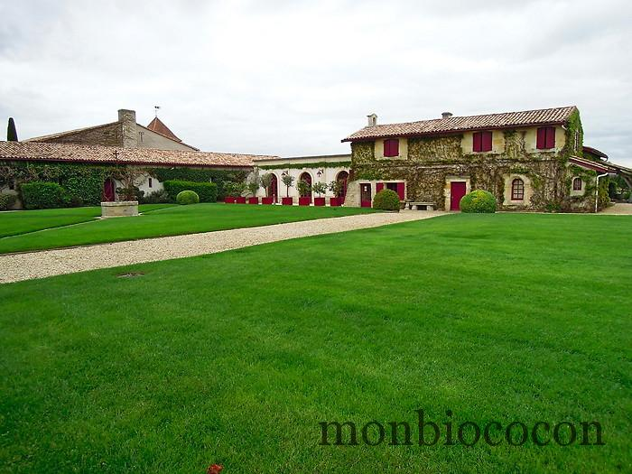chateau-smith-haut-lafitte-gironde-vignoble-2
