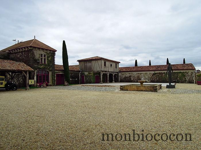 chateau-smith-haut-lafitte-gironde-vignoble-4