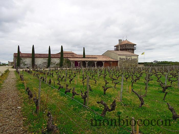 chateau-smith-haut-lafitte-gironde-vignoble-8