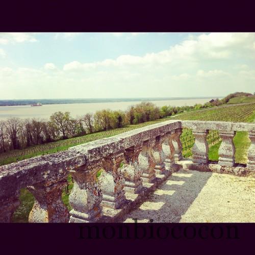 randonnée-tourisme-bourg-sur-gironde-aquitaine-0