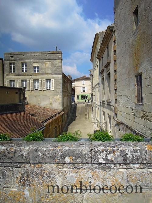 tourisme-bourg-sur-gironde-près-de-bordeaux-3