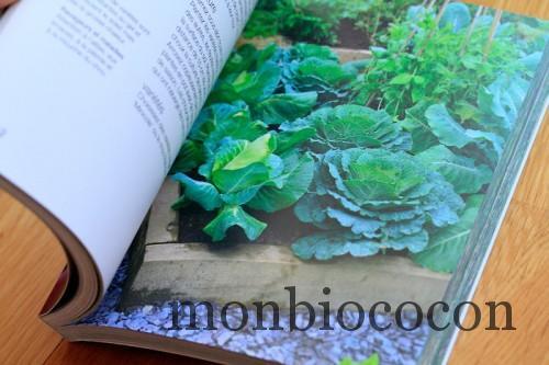 un-potager-sur-un-balcon-livre-jardinage-marabout-0