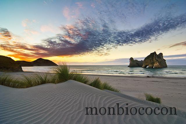 Wharariki Beach is the most gorgeous beach EVER_