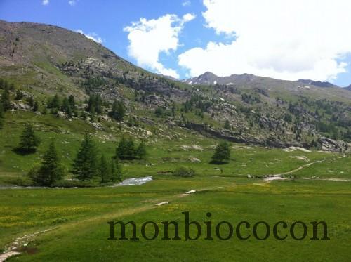 randonnée-alpes-tourisme-clarée
