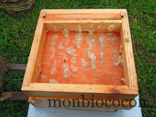un-toit-pour-les-abeilles-7