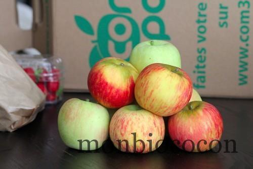 panier-fruitier-com-3-pom-panier-fruit-légume-bio-0