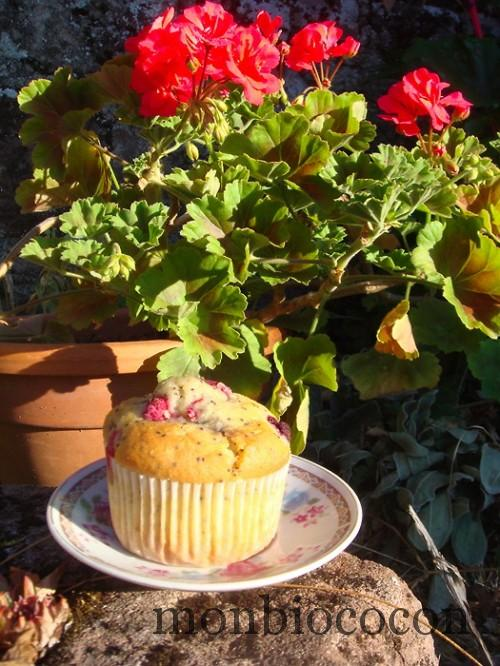 muffin-framboise-mure-moelleux