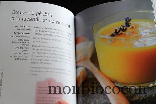 recettes-au-blender-larousse-livre-cuisine-8