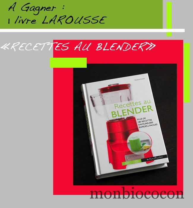 recettes-au-blender-larousse-livre-cuisine