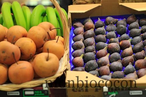 biocoop-magasin-bio-bordeaux-caudéran-novembre-2012-8