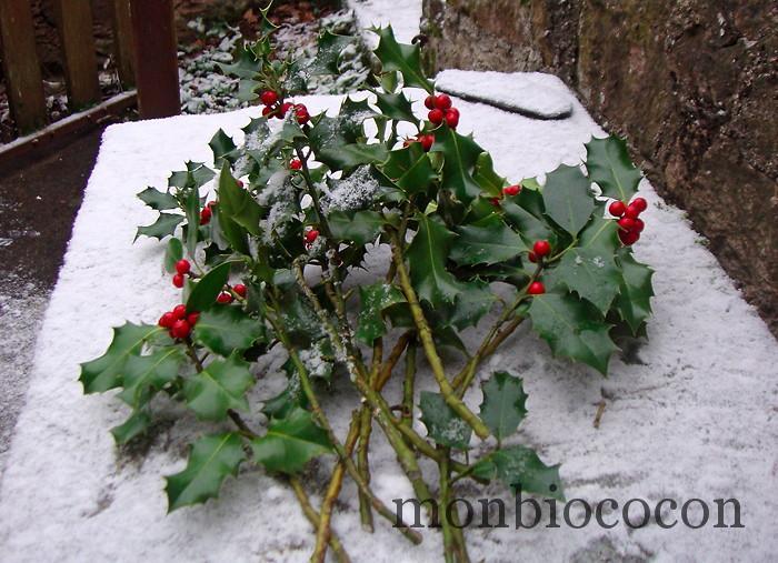 houx-noel-2012-fêtes-fin-d'année-neige
