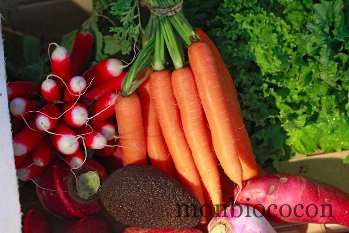 les-petits-cageots-panier-légume-fruit-bordeaux--