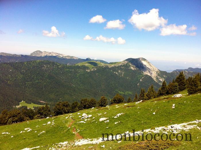 randonnée-chamechaude-chartreuse-sommet-111
