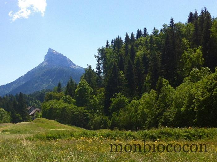 randonnée-chamechaude-chartreuse-sommet-2
