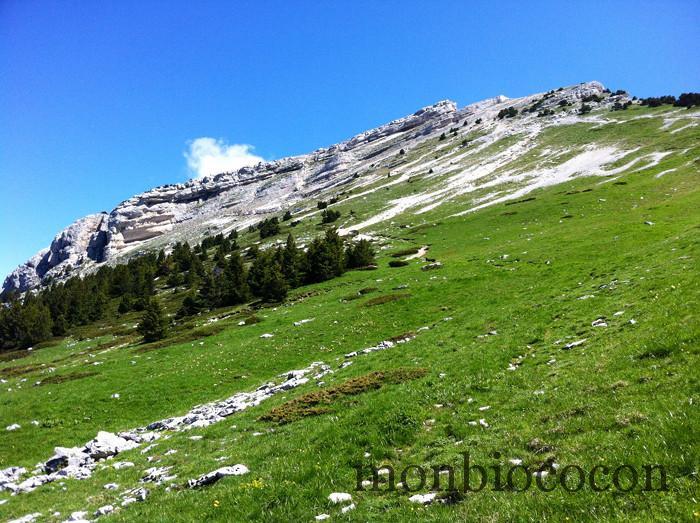 randonnée-chamechaude-chartreuse-sommet-5