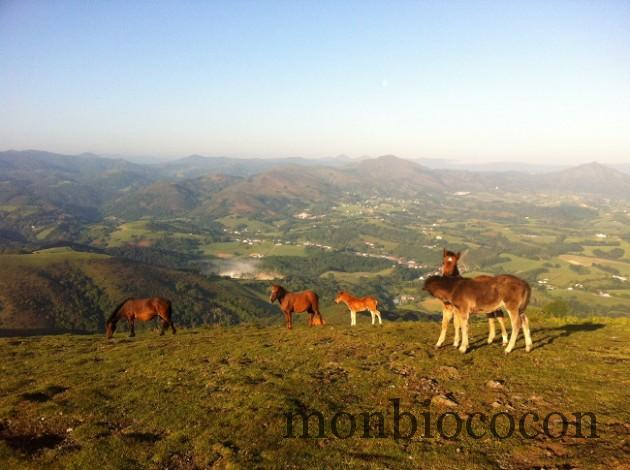 pays-basque-randonnee-mondarrain