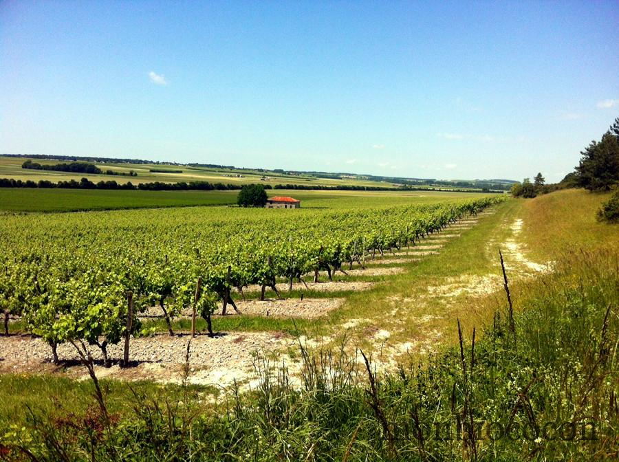 campagne-charente