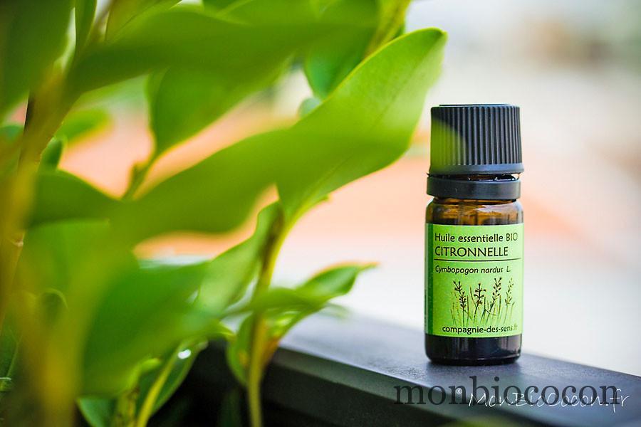 huiles-essentielles-anti-moustique-insectes-6