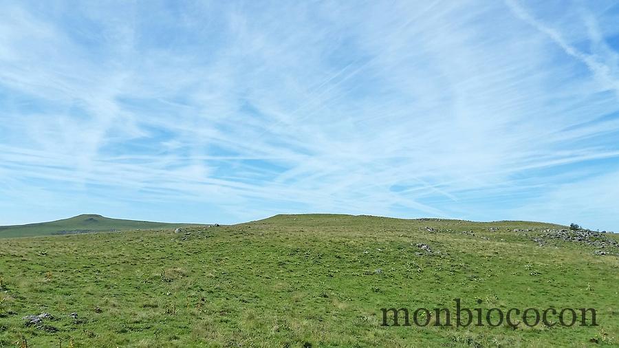 photo-randonnee-plateau-aubrac-aveyron-lozere