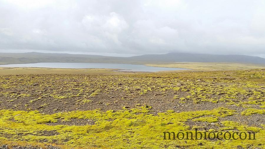 islande-roadtrip-travel-day-1-9