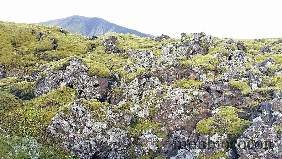roadtrip-islande-photos-