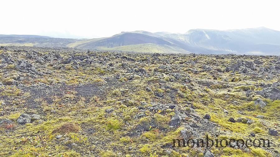 roadtrip-islande-photos-7