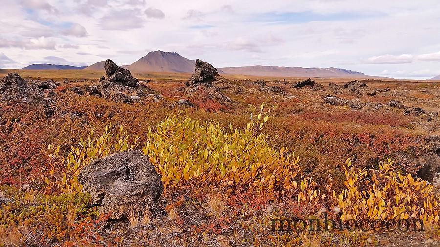 islande-roadtrip-tour-de-ile-11