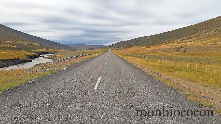 islande-roadtrip-tour-de-ile-9