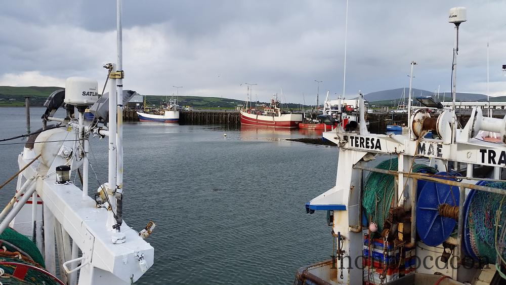 port-dingle