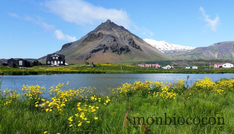 islande-2015-22-petit