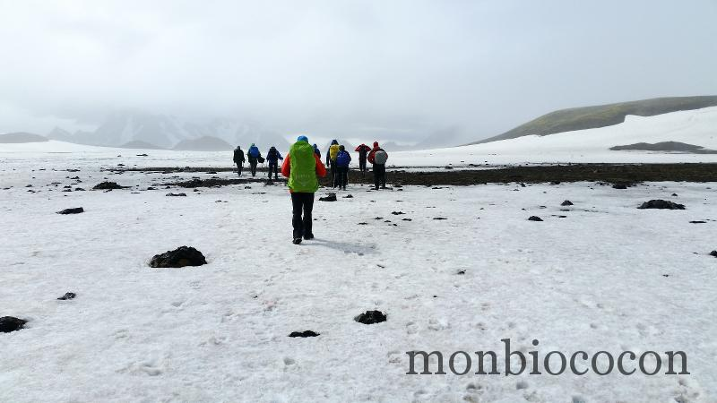 islande-2015-23-petit