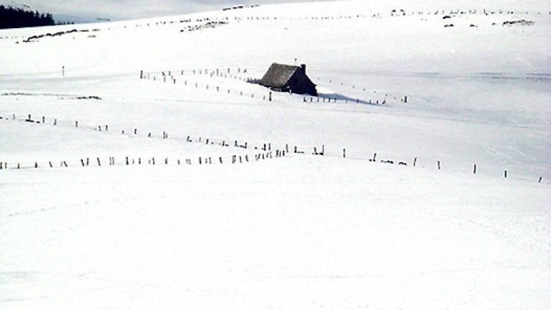 Paysage enneigé sur le plateau de l'Aubrac