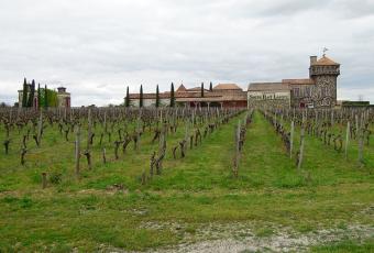 Oeno tourisme en Aquitaine: Château Smith Haut Lafitte et ses vignes de Pessac Léognan