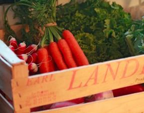 Les Petits Cageots : paniers de fruits & légumes livrés sur Bordeaux