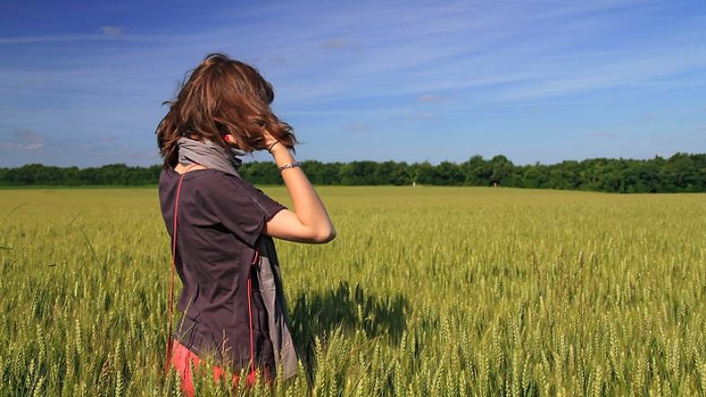 Coquelicot joue à cache cache dans les blés