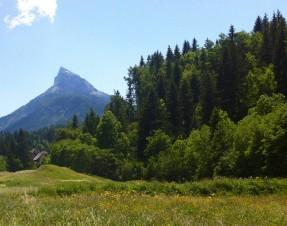 #3 Vacances dans les Alpes : en Chartreuse