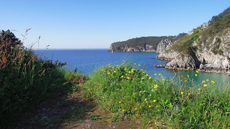 #2 Tourisme en Bretagne : Randonnée au Cap de la Chèvre