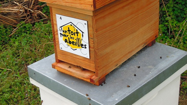 Un toit pour les abeilles, c'est important